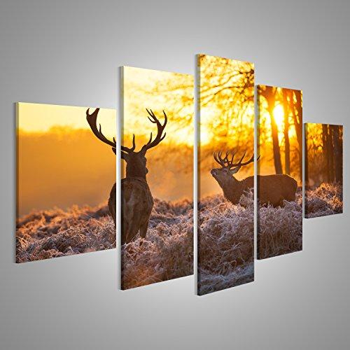 tableau-tableaux-sur-toile-deux-cerfs-dans-les-bois-coucher-de-soleil-image-sur-toile-images-photo-p