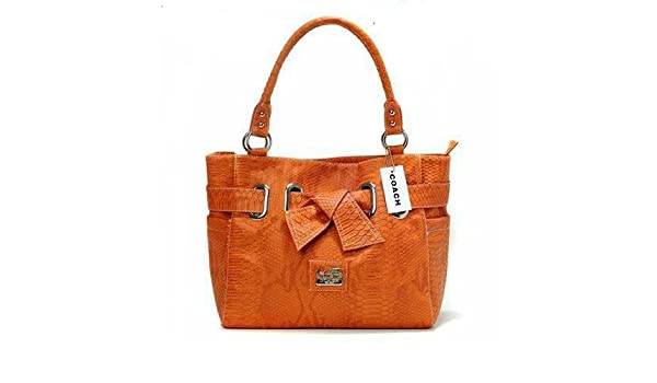 2f4cf295c6 Buy SS Leathers Pure Tenn Leather Ladies Hand Bag Online at Low Prices in  India - Amazon.in