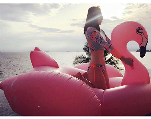 Schwimmtier – Kexin Lin – Flamingo - 5