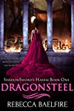Dragonsteel: Shadowsword's Harem (Book One) (Reverse Harem Urban Fantasy Romance) (English Edition)