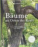 Bäume an Orten der Kraft: Die Botschaft verstehen, Heilung finden
