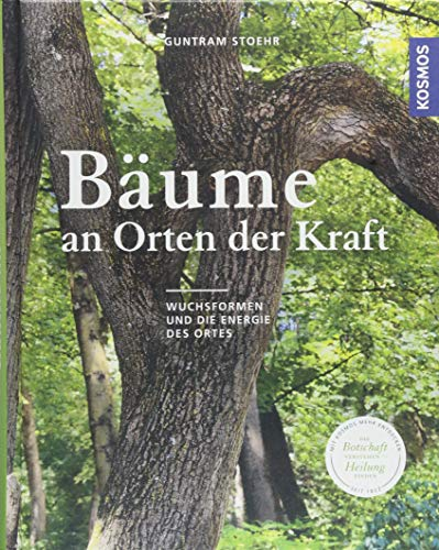 Bäume an Orten der Kraft: Wuchsformen und die Energie des Ortesn