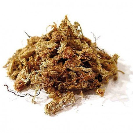torfmoos-des-chile-5-kg