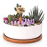 Famhome 6-Zoll-moderne weiße Keramik runden saftigen Kakteen Über mit Entwässerung Bambus Tablett, dekorativen Garten Blume Halter