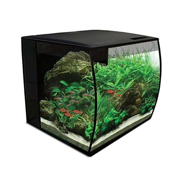Hagen Fluval Flex Aquarium Kit, 35 x 33 x 33 cm, 34 Litre