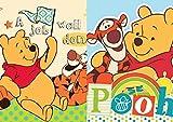 Winnie Pooh 2er Set KINDER Waschlappen Waschfleck 30x30cm