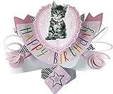 Second Nature Pop Up Geburtstagskarte mit Beschriftung und Katze