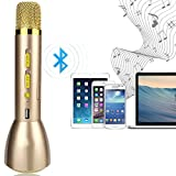 Drahtlos Bluetooth Mikrofon - Wireless Tragbare KTV Heim Karaoke Player Stereo-Player für PC Laptop iPhone iPod Android Smartphone mit Mic Speaker (Golden)