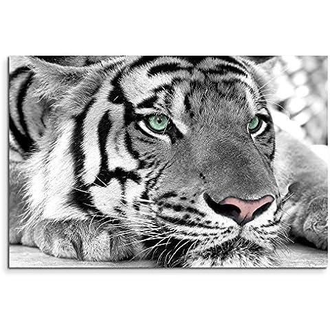 120x 80cm Lienzo en Bastidor De Tigre cara Primer plano pared Imagen sobre lienzo como Panorama