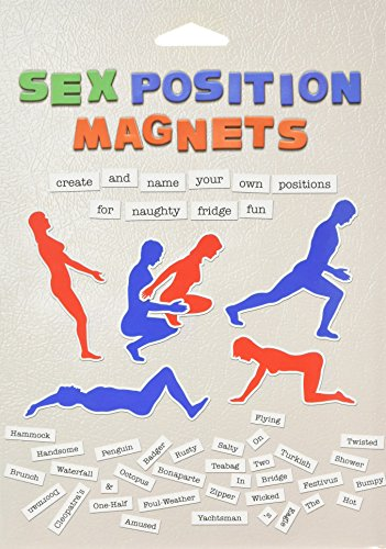 Sex Positions Magnets: Create and Name Your Own Positions for Naughty Fridge Fun (Sex Magneten)