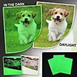 Papier photo A4 phosphorescent Fluo pour imprimante à jet d'encre