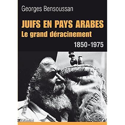Juifs en pays arabes. Le grand déracinement 1850-1975 (HIST.AUJOURD'H.)