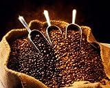 Mexican Chiapas H/g E/p Fair Trade Organic Coffee Beans (Medium Roast (Full City +), 5 Pounds Whole Beans)