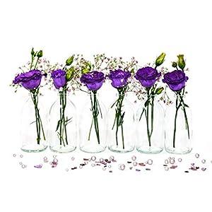 casavetro 24 x Mini Vase Glasfläschchen kleine Flasche Tischvasen Set Glas Deko-Flaschen Väschen Vasen Hochzeit-Deko
