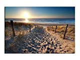 Alu-Dibond Bild Weg zum Sandstrand an der Ostsee mit Sonne ALB00641 Butlerfinish® 60 x 40 cm, Wandbild Edel gebürstete Aluminium-Verbundplatte, Metall effekt Eyecatcher!
