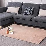 Teppich Wohnzimmer Schlafzimmer Tür Matte Nordic Home Erker quadratisch Couchtisch Bett Seite einfarbig Krabbeldecke (Farbe : 1, größe : 71 * 141cm)