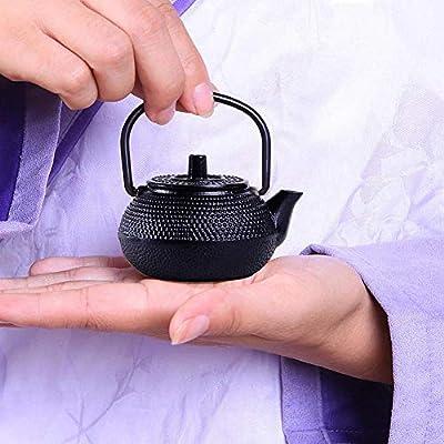 Fancyland Théière en Fonte Petite Bouilloire à sifflet théière Cafetière, Bouilloire à thé en Convient pour cuisinière à gaz/cuisinière à Induction/Chauffage électrique 50ml/300ml/800ml.