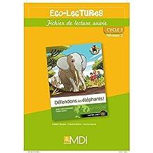 Défendons les éléphants - Fichier d'activités