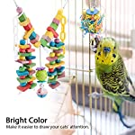 fdit wooden parrot toys colorful wood birds standing chewing climbing swing stairs ball toys gift 2pcs Fdit Wooden Parrot Toys Colorful Wood Birds Standing Chewing Climbing Swing Stairs Ball Toys Gift 2Pcs 51rHrEmcm5L