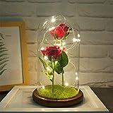 FOONEE Enchanted Rose Beauty and The Beast, lámpara LED de Rosa...