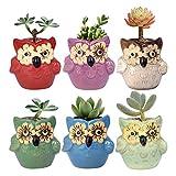 Wituse - Piantine da ufficio, vasetti - Simpatico vaso per piante, a forma di animale con occhi, vaso per cactus, 6 Colors, misura