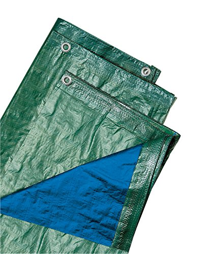 Verdelook, biacchi ettore 54073 telo blu, 4x 6 occhiellato, 100 g, verde