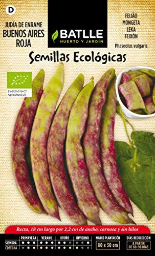 graines-bio-de-batlle-haricots-rouge-buenos-aires-20-50-graines