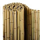 casa pura® Bambus Sichtschutz | Bambusmatte in Premiumqualität, massive Bambusrohre | naturbelassen | drei Größen (100x250cm, HxB)