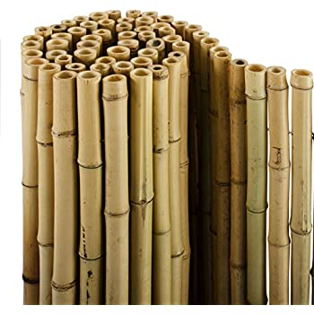 Casa pura bambus sichtschutz bambusmatte in premiumqualität massive bambusrohre naturbelassen drei