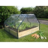 Botanico Let's Grow Wooden Raised Bed with FREE Cloche