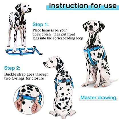 PETBABA No Pull Dog Harness, Front Clip Give Pet Choke Free Walking, Reflective Safety at Night, Step-in Vest with… 7
