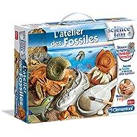 28994f370ba82a Amazon.fr   Paléontologie - Jeux de société   Jeux et Jouets