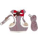 PET SPPTIES Pet Soft Mesh Hundegeschirr Weste und Hundeleine für Kleine Hunde Katze Hundeweste Harness Weich Einstellbare Komfortable PS025 (XS, Striped Red)