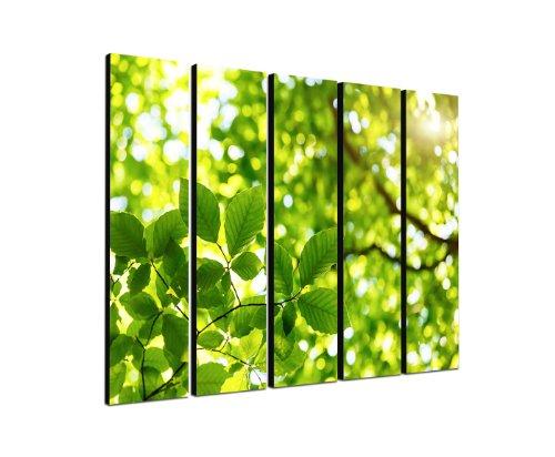 Quadro albero foglie verdi vita energia 5x 30x 120cm XXL extra grande 5teiliges-Poster murale su tela e telaio pronto per essere appeso-la nostra immagini su tela convince grazie alla loro formati insoliti e stampa molto dettagliata, da fino a 100Megapixel alto ricostituito foto.