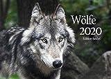 Edition Seidel Wölfe Premium Kalender 2020 DIN A3 Wandkalender Tiere Wald Natur