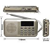 eJiasu Radio Portable Rechargeable FM charge LED Affichage numérique haut-parleur stéréo USB TF Card Player (or)