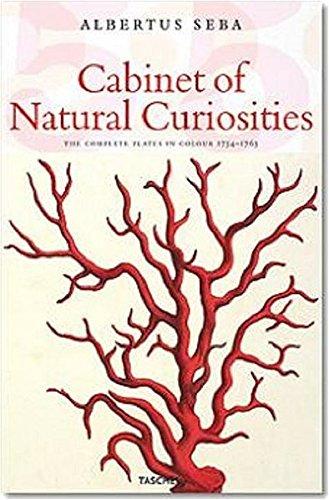 Le Cabinet des curiosités naturelles : Edition trilingue français-anglais-allemand