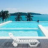 Italica Furniture 8103 Sun Lounger (Matte Finish, White)