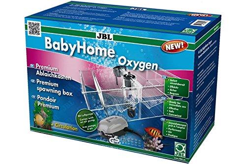JBL 6432000 Premium - Ablaichkasten - Komplettset mit Luftpumpe, BabyHome Oxygen