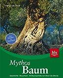 Mythos Baum: Geschichte · Brauchtum · 40 Baumporträts von Ahorn bis Zitrone