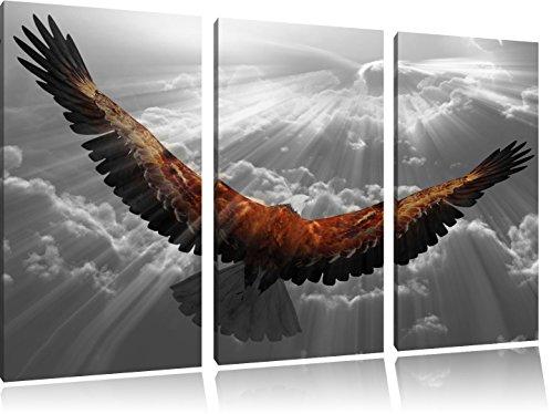 anmutiger Adler über den Wolken schwarz/weiß auf 3-Teiler Leinwandbild 120x80 Bild auf Leinwand, XXL riesige Bilder fertig gerahmt mit Keilrahmen, Kunstdruck auf Wandbild mit Rahmen, gänstiger als Gemälde oder Ölbild, kein Poster oder Plakat (Bilder Adler)