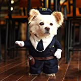 Hoopet Cool and Cute Pet Costume puppy Clothing for dogs and cats Perfect for Halloween Fancy dress Christmas (L)