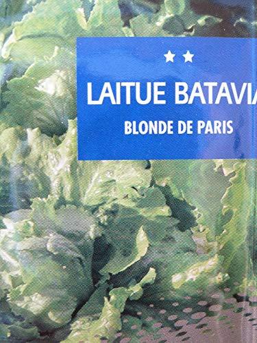 Portal Cool Samen Batavia Salat Blonde Seed Paris. Saat