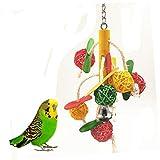 Juguetes de bola de pájaro con campana Accesorios colgantes para loro periquito periquito Cockatiels guacamayo Conure Cacatúa gris africana Lovebird jaula masticar juguete