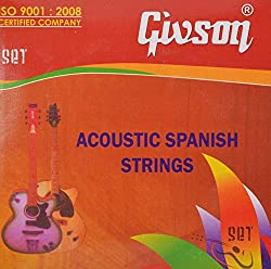 Givson Acoustic Guitar Strings