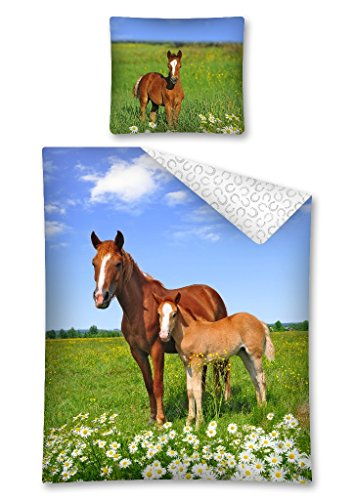 2-tlg Jugend Bettwäsche Pferd Pferde Fohlen 140x200 cm + 70x80 cm 100% Baumwolle