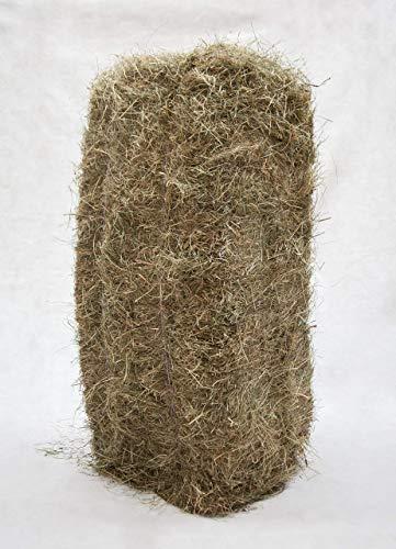 Gebrüder Goller GbR 17kg Qualitäts Heuballen, Kaninchenheu 1,12€/kg