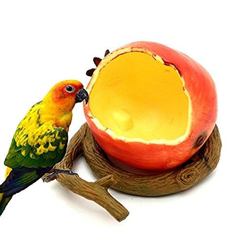 Famhome Oiseaux Mangeoire Bol, Nourriture pour oiseaux Godet Gamelle pour petit perroquets Amazones cacatoès Hamster Petit Animal l'eau potable à nourriture pour oiseaux cage Accessoires
