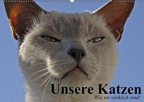 Unsere Katzen. Wie sie wirklich sind! (Wandkalender 2017 DIN A2 quer): Die ganze Wahrheit über Katzen! (Geburtstagskalender, 14 Seiten)