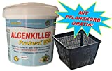 Weitz Algenkiller Protect - 1,5KG - für bis zu 100.00 Liter Teichwasser - POWERHAUS24 Pflanzkorb!